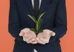5 Ways To Create a Greener Office